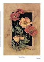Framed Poppies (S) (*)