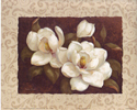 Nana's Magnolias I  (*)