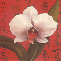 Chinese Orchid on Red (*)