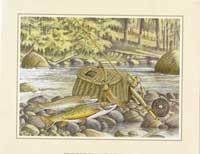 Fishing Gear II (*)