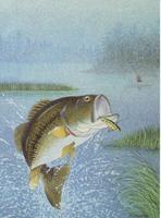 Fishing I (*)