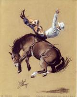 Bronco Riding (*)