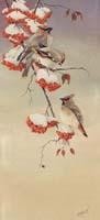 Cedar Waxwings (*)