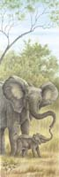 Mama Elephant with Baby (*)