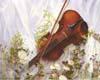 music003