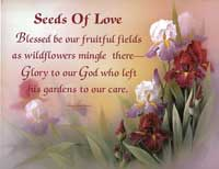 Seeds Of Love (*)
