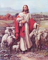 Jesus Sheperd