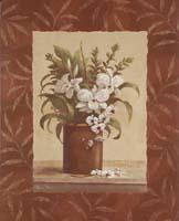 Sylvia's Orchids I (*)