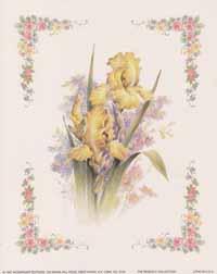 Yellow Iris (*)