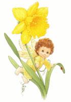 Blossom Tots Fairies II (S) (*)