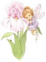 Blossom Tots Fairies I (*)
