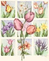 Flower0110 (*)
