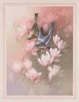 Bluebird (*)