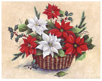 Red and White Poinsettias (*)
