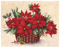 Red Poinsettias (*)